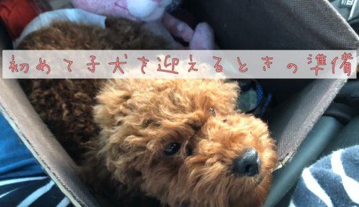 【小型犬】子犬を迎えるときの最低限の準備グッズ8選