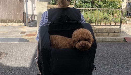 犬用リュックならエアバギーの「3way バックパックキャリーワイド」!大きな愛犬でもOK