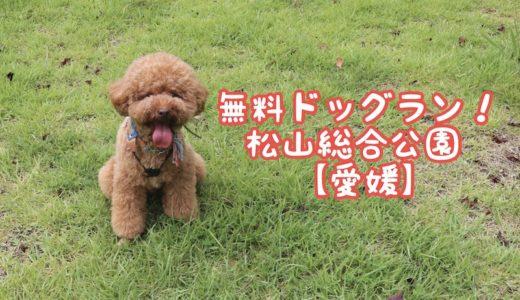 【松山ドッグラン】「松山市総合公園」のドッグランは無料でおすすめ