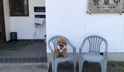 【東温市カフェ】愛犬とカフェでまったり「モンジュリコーヒーハウス」※ワンコ店内OK!