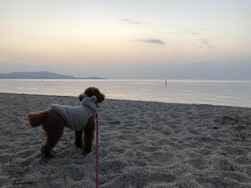 淡路島の砂浜の写真