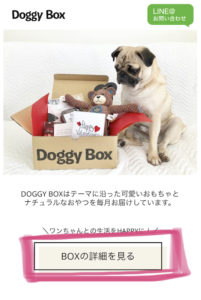 ドギーボックスのWEBサイトの画像
