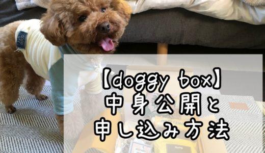 毎月届く愛犬のためのボックス「Doggy Box」の中身公開&申し込み方法