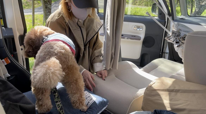 ムーヴキャンバスを車中泊仕様にしています。